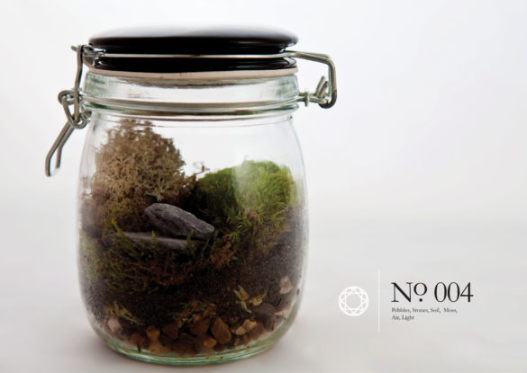 House of Sylphina interior design – terrarium design project. 004a