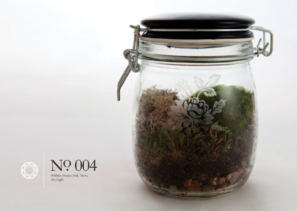 House of Sylphina interior design – terrarium design project. 004