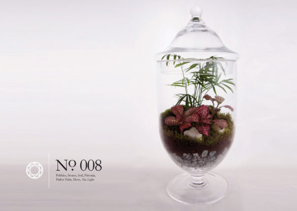 House of Sylphina interior design – terrarium design project. 008